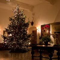 December Kasteel Huis Bergh